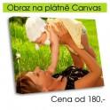 Obraz na plátně CANVAS